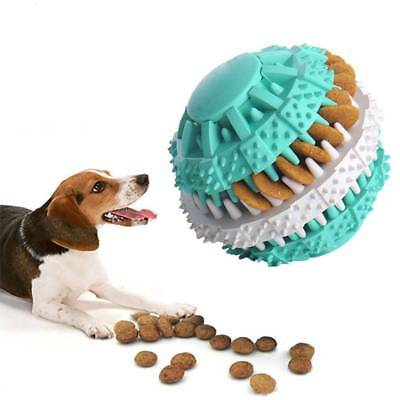 Pet Dog Toy Interactive Rubber Ball Cat Dog Teeth Chew Toys Tooth Cleaning Balls