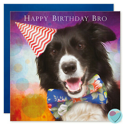 BOYS MEN MALE Birthday Cards Happy Border Collie Dad Brother by Juniperlove