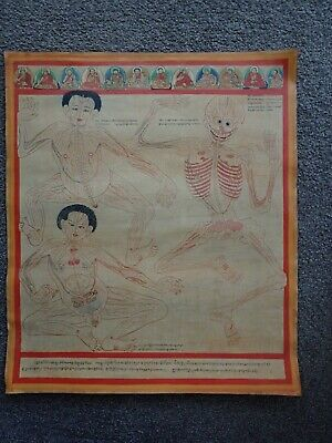 Medical Thangkas of the Blue Beryll Anatomy - Minor Connecting Blood Vessels