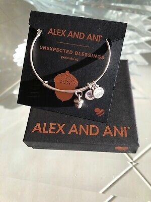 Authentic Alex and Ani Unexpected BLESSINGS Rafaelian Silver Charm Bangle