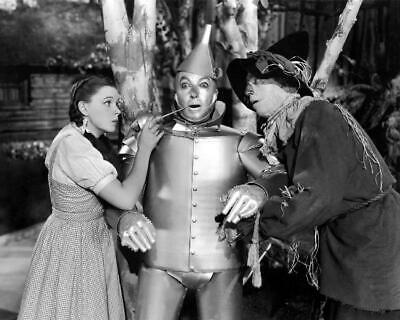 The Wizard Of Oz Judy Garland Jack Haley Ray Bolger 8x10 Photo (WO-1)
