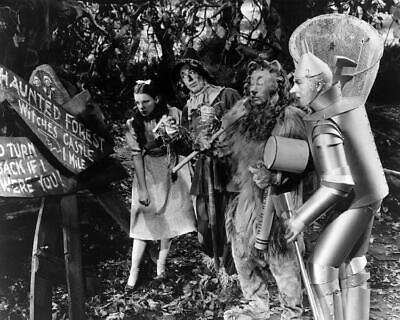 The Wizard Of Oz Judy Garland Ray Bolger Bert Lahr Jack Haley 8x10 Photo (WO-8)