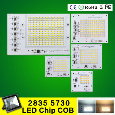 10W 20W 30W 50W 100W LED Chip COB Integrated Smart IC Flood Light 220V 2835 5730
