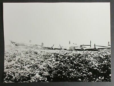 Photo of Multiple Airplanes Sitting in Field - aircraft