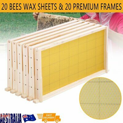 Bees Wax Foundation+Wooden Alliance Pine Beehive Frame 20PCS Beekeeping Kits AUS