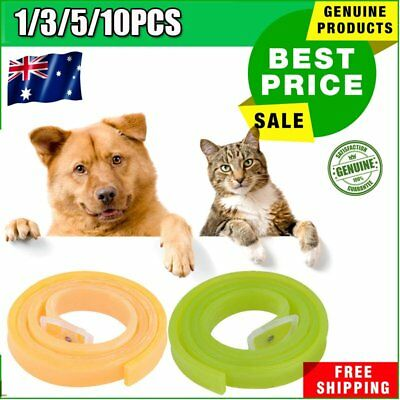 AU Hot for Dog Pet Flea Collar Kill Repel Flea Egg Mosquitoe Tick Control RemeO0