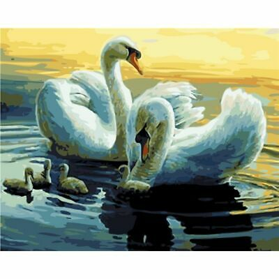 Unframed Swan Animals Picture DIY Painting By Numbers On Canvas For Home Decor