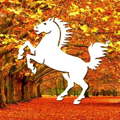 Autumn Horse Racing Software Combo