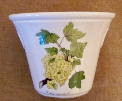 SUPERB PORTMEIRION POMONA WHITE DUTCH CURRANT Large Ice Bucket