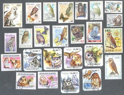 Owls 50 all different stamp collection-Birds of Prey-Raptors