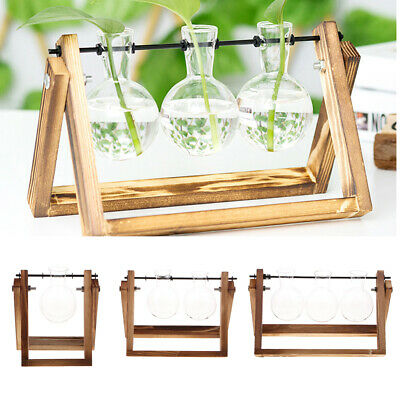 Tabletop Decor Bulb Glass Hydroponic Vase Flower Planter Pot Wooden Stand