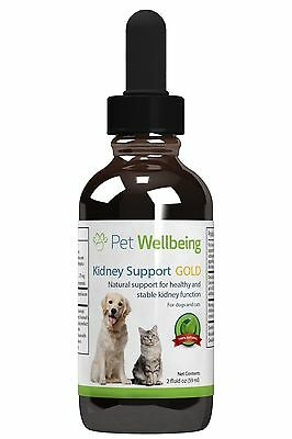 Pet Wellbeing Kidney Support Gold For Cats 2 Fl Oz