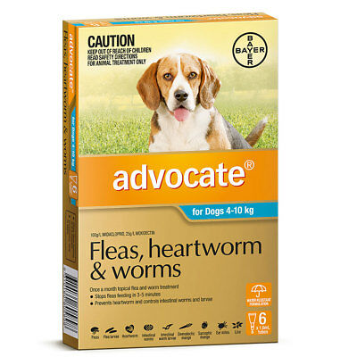 Advocate Teal Flea & Worm Treatment for Dogs 4 - 10kg , 9 Pack