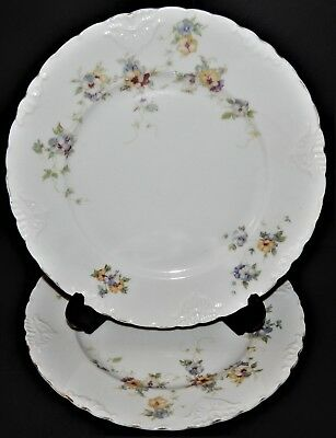 2 Herman Ohmne Silesia Germany China Dinner Plates Floral Pattern 140? Gold Trim