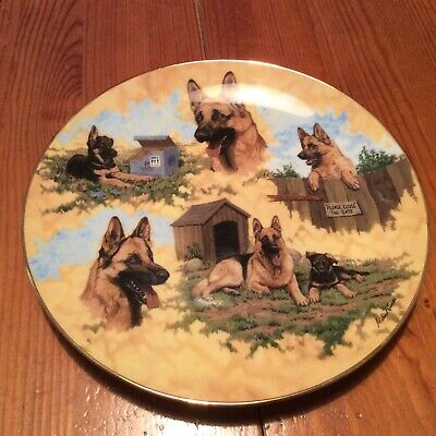 Country Artists. German Shepherd Collectors Plate. New and boxed.