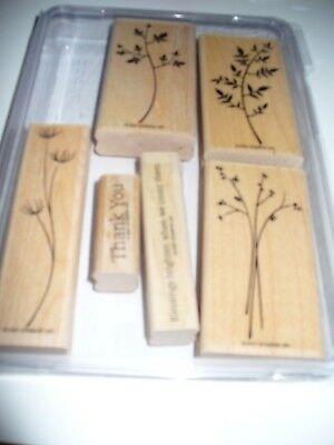 Stampin' Up Stem Silhouette