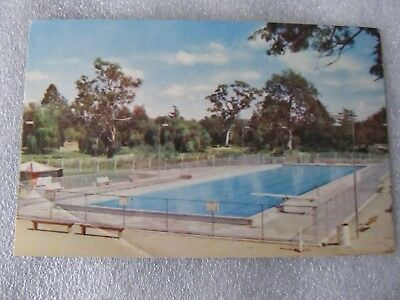 Vintage Murray Views Postcard - Olympic Pool Benalla Victoria