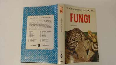 Good - The Young Secialist Looks at Fungi - Haas, Hans 1969-01-01 A good conditi
