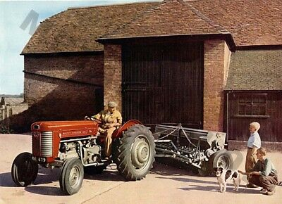 Massey Ferguson 65 Tractor (B) - Poster (A3) - (3 for 2 offer)
