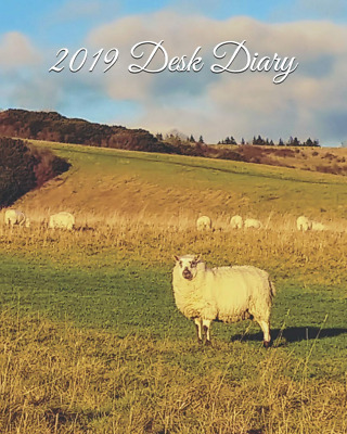 2019 Desk Diary: Weekly Diary,  Planner & Monthly Calendar - PAPERBACK NEW BOOK