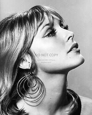 Actress Sharon Tate - 8X10 Publicity Photo (Rt761)