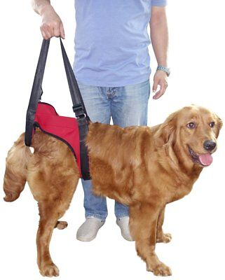 Vivaglory Dog Lift Harness for Seniors or Recovery Front or Rear - Many Options!