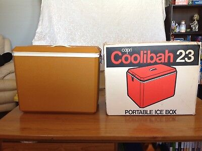 Capri Coolibah Esky Vintage Made In Australia Portable Ice Box in Original box