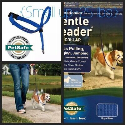 🐾Premier Gentle Leader Quick Release Headcollar {Small} Royal Blue / DVD 📀 🐾