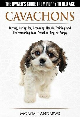 Cavachons The Owner's Guide  (No.1 Best-Selling Paperback Cavachon Book)