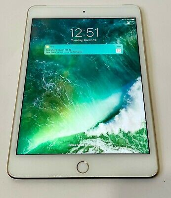 EXCELLENT CONDITION Apple iPad mini 4 32GB Wi-Fi Cellular 7.9in - Gold MNWR2LL/A