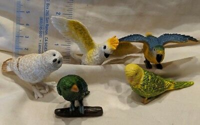 Safari High Detailed Wild Jungle Animal Figures - Exotic Birds - Owls, Parrots