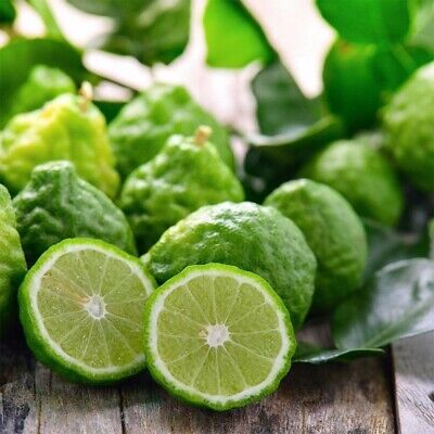 30 Pcs Rare Kaffir Lime Seeds Tree Garden Plant Lemon Bonsai Seeds Pot Perennial