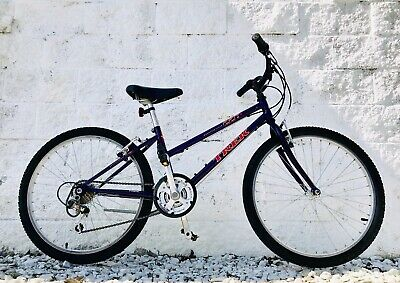 "40743764b3b TREK 220 MOUNTAIN Track 18-Speed 13"" Youth Bike w/ Shimano Altus and ..."