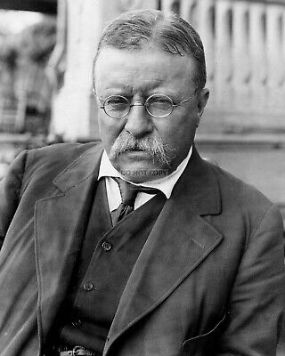 Theodore Roosevelt 26Th President Of The United States - 8X10 Photo (Rt817)
