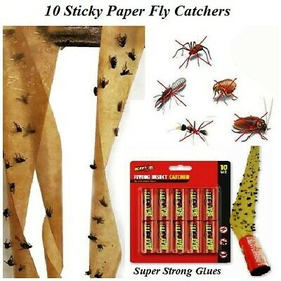 10 Fly Paper Sticky Glue Insect Bug Catcher Killer Strong Roll Tape Strip