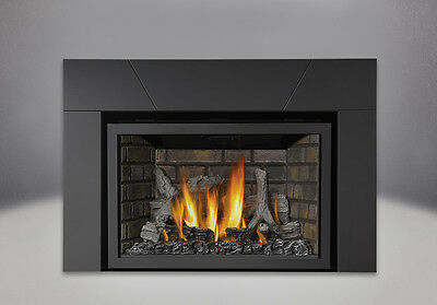 Napoleon CLOSEOUT Infrared IR3 Direct Vent Gas Insert Fireplace IR3N-1SB SALE!!