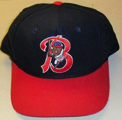 321569c8c4c6cd Buffalo BIsons Minor League Baseball Vintage 90s Snapback hat -BRAND NEW!-