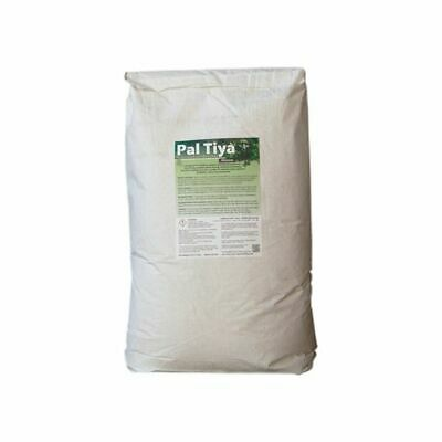 PAL TIYA PREMIUM - All Weather Sculpting Material - 20kg Bag - Amazing Product