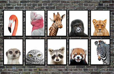 HD Print Animals Oil Painting Home Decor on Canvas For Kids Living Room Unframed