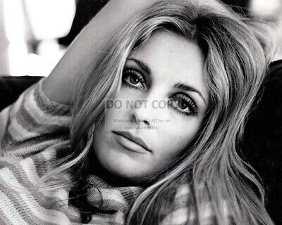 Actress Sharon Tate - 8X10 Publicity Photo (Rt879)