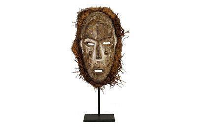 "Aggressive Ituri Forest Mask 13"" with Custom Stand- DRC - African Art"