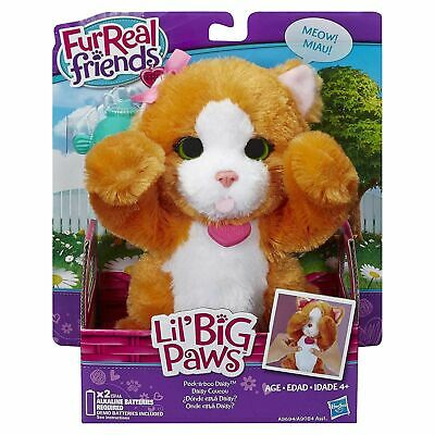 Girls Branded Furreal Friends Soft Toy Lil Big Paws Peek a boo Daisy Pet