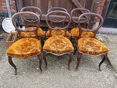 Superb Set 6 Victorian Carved Walnut Dinning Salon Chairs Vacant Cartouche