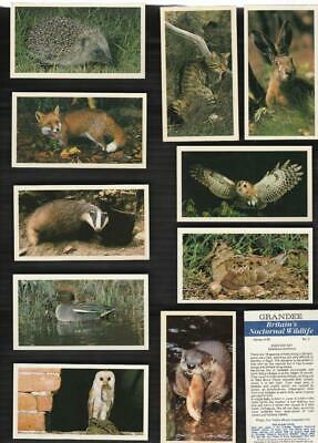 Full Set 30  Grandee Britains Nocturnal Wild Life 31Yrs Old Cigarette Cards