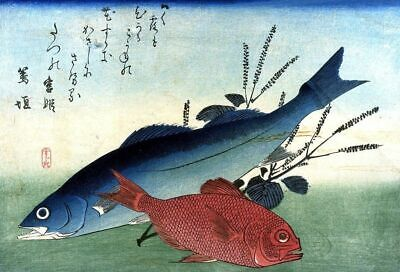 Set of 2 Repro Japanese Woodblock Shoal of Fishes Prints Pictures by Hiroshige