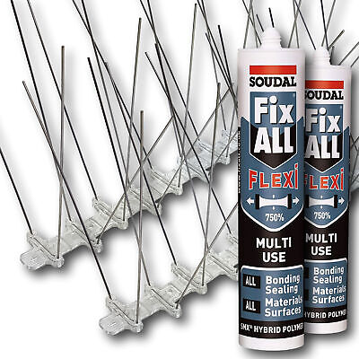 BIRDGO STAINLESS STEEL Gull Spikes - Anti-Bird Control Deterrent for  Seagulls