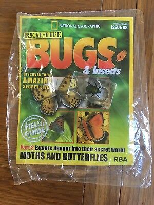 National Geographic Real Life Bugs and Insects Magazine 88 Bug In Glass New