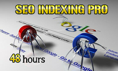 Basic SEO Service - Make GOOGLE index your website in 24 to 48 hours