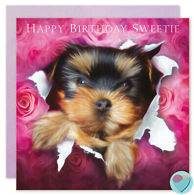 Birthday Cards Girls Boys Men Women or from the Yorkie Terrier Puppy Dog lovers