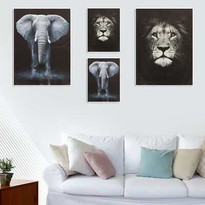 Canvas Prints Framed Wall Art Home Office Decor Painting Gift Elephant & Lion AU